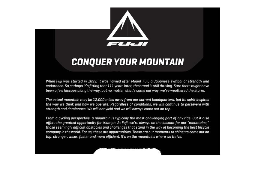 company-info